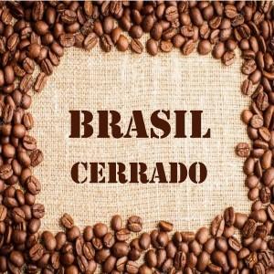 Café Arábica Brasil